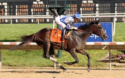 Delaware Park picks and horses to watch: Oct. 17