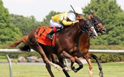 Delaware: Stolen horses, unlicensed participants, and more from stewards
