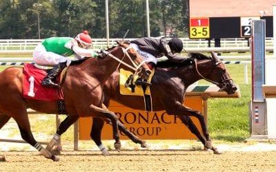 Gifted Heart looking for third straight in Dickie Moore