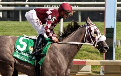 "Delaware Park: Looking to overcome ""difficult obstacles"""