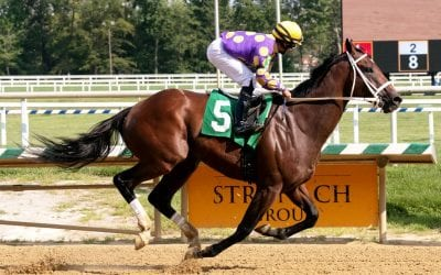 Laurel Park picks and ponderings August 8, 2020