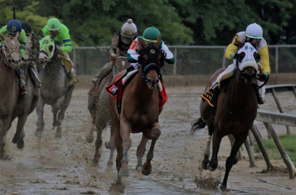 Piassek: Criticizing PETA won't save horses, or racing