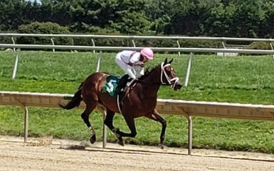 Carol Cedeno aims for 7th Delaware jockey title
