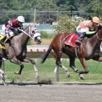 """With Horologist, racing odd couple finding """"perfect marriage"""""""