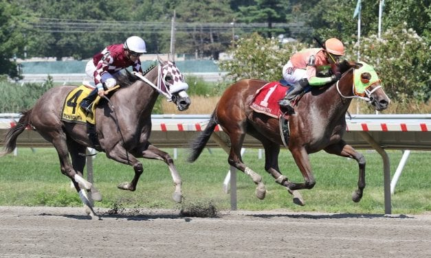 "With Horologist, racing odd couple finding ""perfect marriage"""