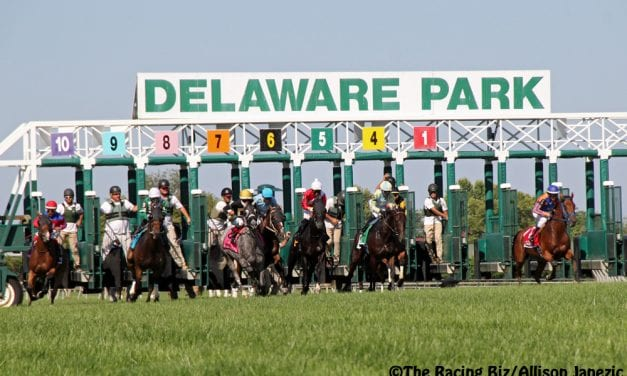 Delaware Park: The top 5 local juveniles to race are…