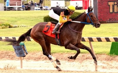 Stakes winner Clubman set for Friday return