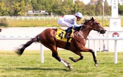 King of Egypt reigns at Laurel Park for sire American Pharoah