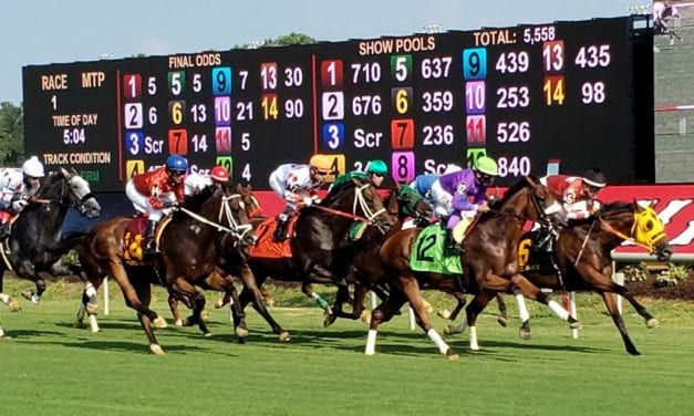 Colonial Downs to race 18 days in 2020