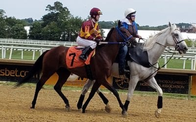 Lauralea Glaser racing again for love of the game, horses
