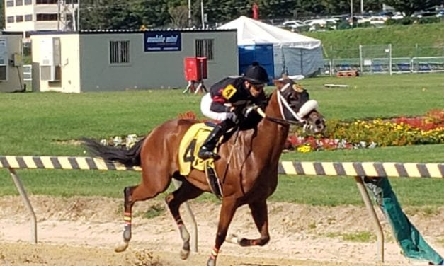 """""""Classy"""" Marvelous Martina easily best in Big T allowance"""