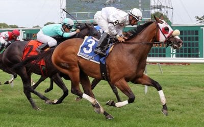 Veteran Oak Bluffs storms to Joey P Handicap win