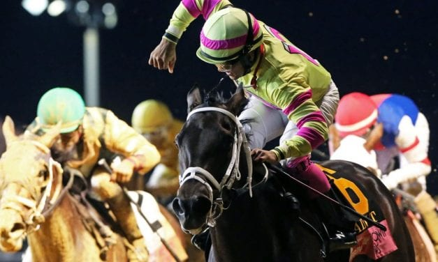 Bombs away as Lady T N T blows up G3 Charles Town Oaks