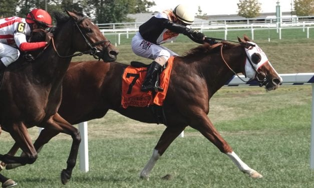 Our experts picks the BWI Turf Cup