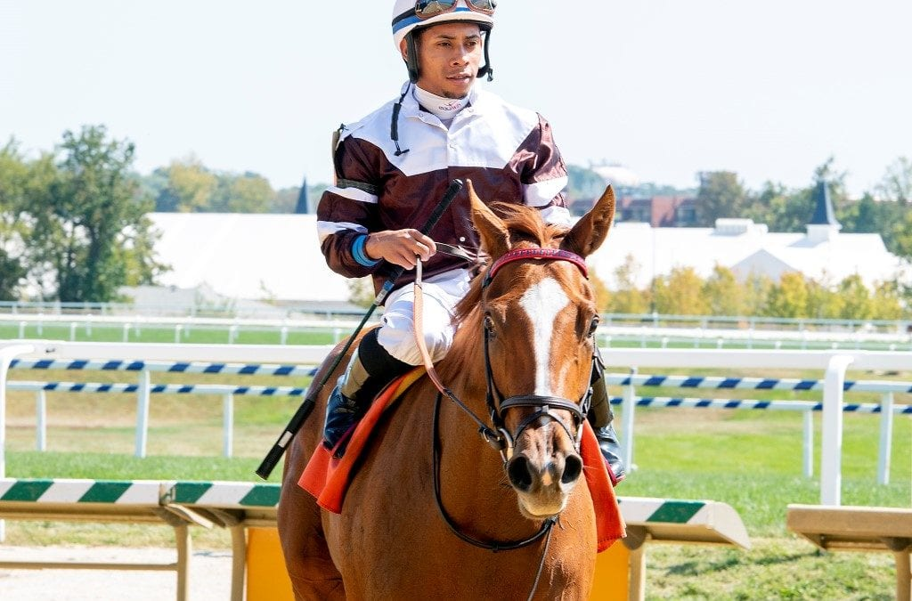 Laurel route sends Md-bred Sharing to Breeders' Cup win