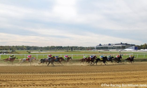 Laurel Park cancels Friday card
