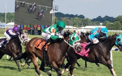 Laurel Park set for Saturday live racing return