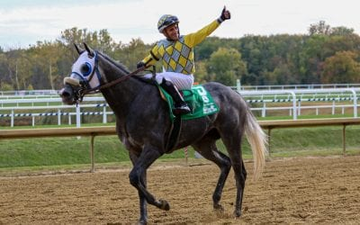Md Million: Mr. d'Angelo back to defend Turf title