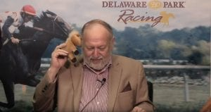 EXCLUSIVE: We interview Bungee the handicapping horse