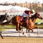 O'Dwyer duo tackles Smart Halo