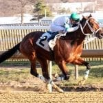 Hello Beautiful dazzles in Juvenile Filly Championship win