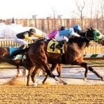 Lewisfield, Anna's Bandit score in Laurel stakes