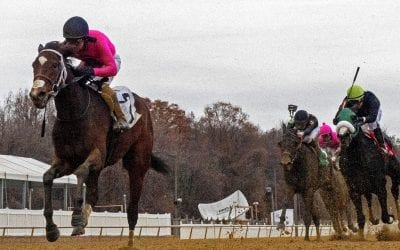 Weekend: Trevor McCarthy strikes twice in Laurel stakes