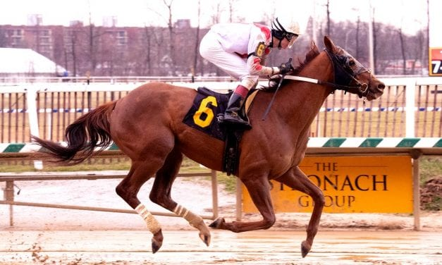 Maryland-bred Torch of Truth set for bigger task