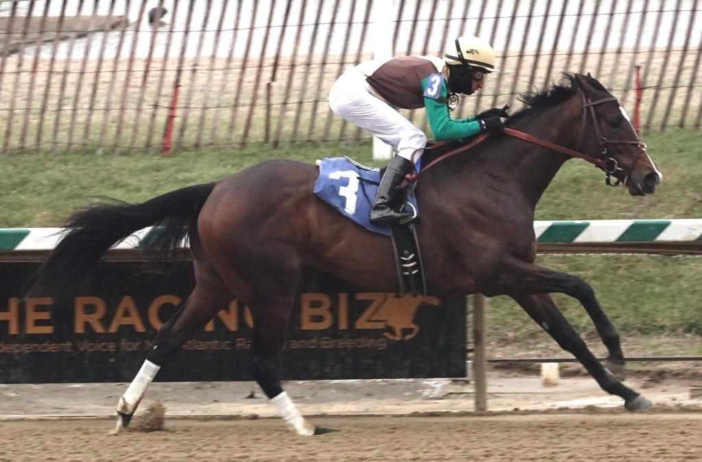 """Cinderella"" horse Alwaysmining scores in Jennings"