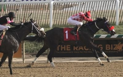 Lebda, Naughty Thoughts post upset scores in Laurel stakes
