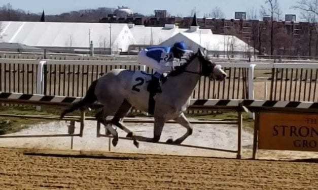 Amanite powers to first-out victory at Laurel
