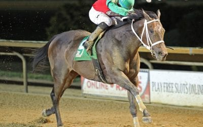 Anna's Bandit wins to highlight CT stakes action