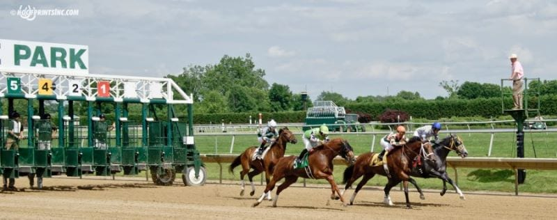 Delaware Park picks and horses to watch: July 4