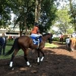 Off the Pace: What racing should do… yesterday