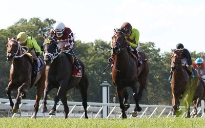 Another Miracle Wins My Frenchman at Monmouth