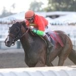 Horologist tabbed NJ-bred Horse of the Year