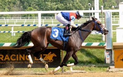 Harpers First Ride impresses in Laurel allowance
