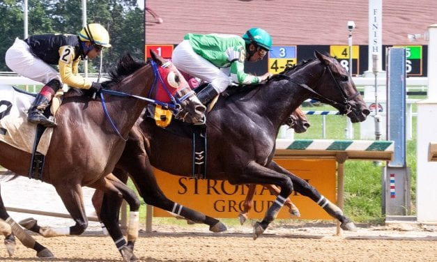 Arch Cat upsets Laurel Park feature