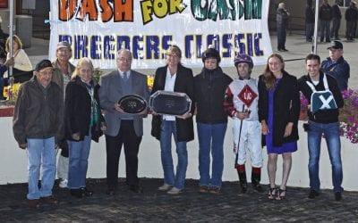 Gofundme set up for Leslie Condon's horses