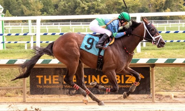 Depository and more: 2day in Midlantic 2yo