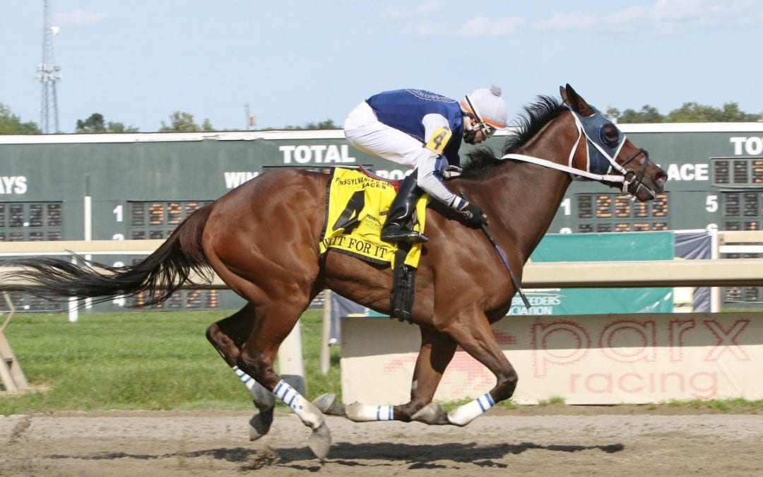 Quality, full fields headline Delaware Owners Day