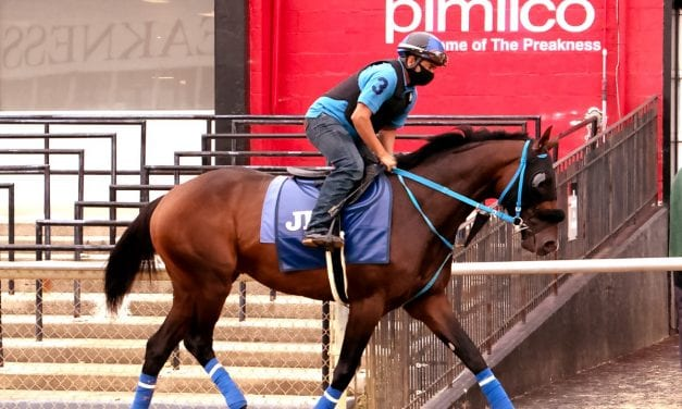 Preakness Profile: Jesus' Team