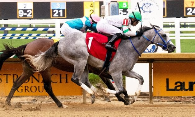 Kwist is first Maryland winner for sire Nyquist