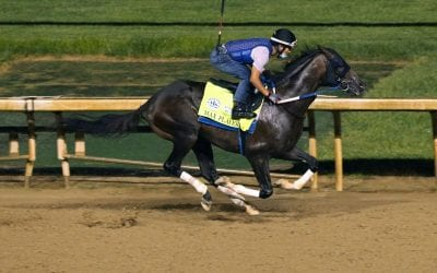Max Player latest to join Preakness ranks