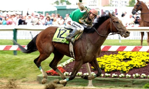 Preakness Memories: Afleet Alex and adversity