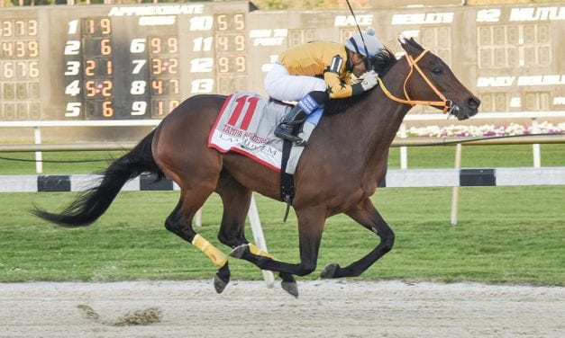 Kentucky Derby: King Guillermo out, targets Preakness