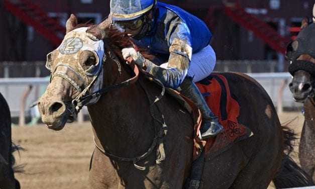 Preakness: Mystic Guide under consideration