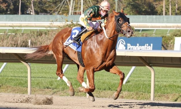 Premier Star shines in Jersey Shore Stakes
