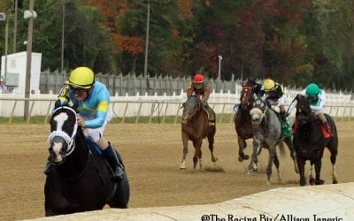 Laurel Park: 5 questions for Saturday stakes