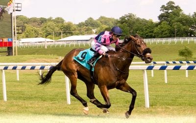 Md Million: Fiya strong Turf Sprint favorite